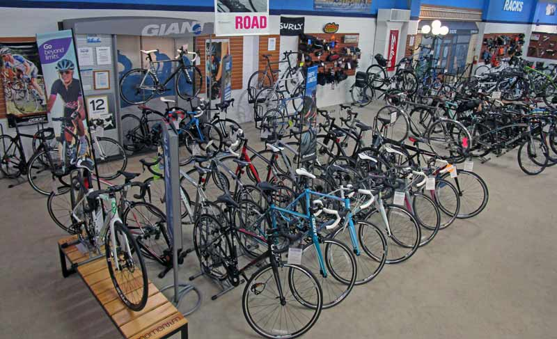 Giant Bikes at Indianapolis Cycle Specialist
